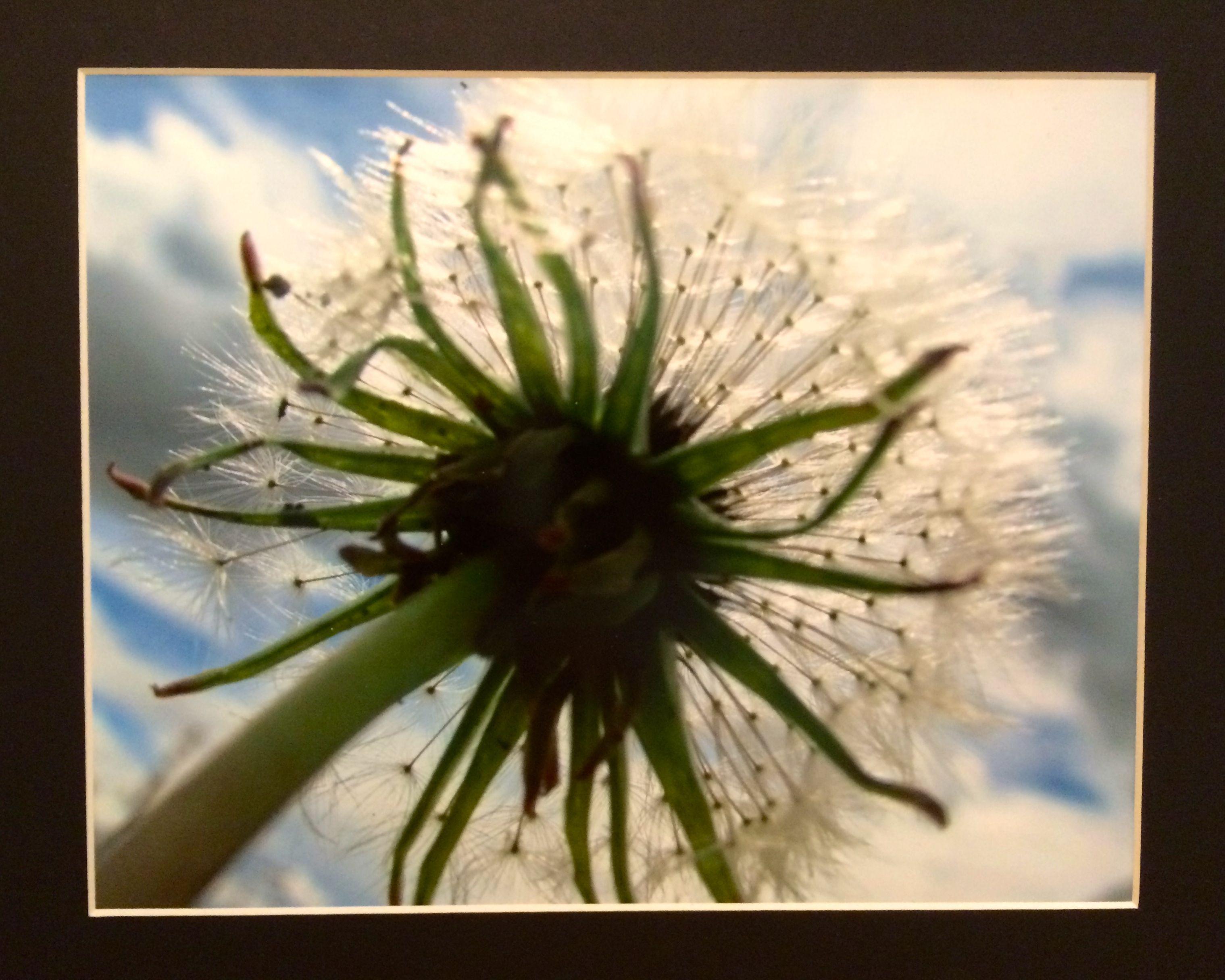 High Schol Photo Silver Anthony V